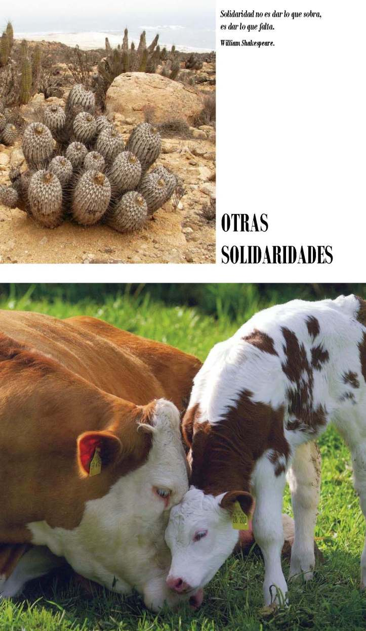 LA SOLIDARIDAD... Nº 3 Otras solidaridades..._Página_03