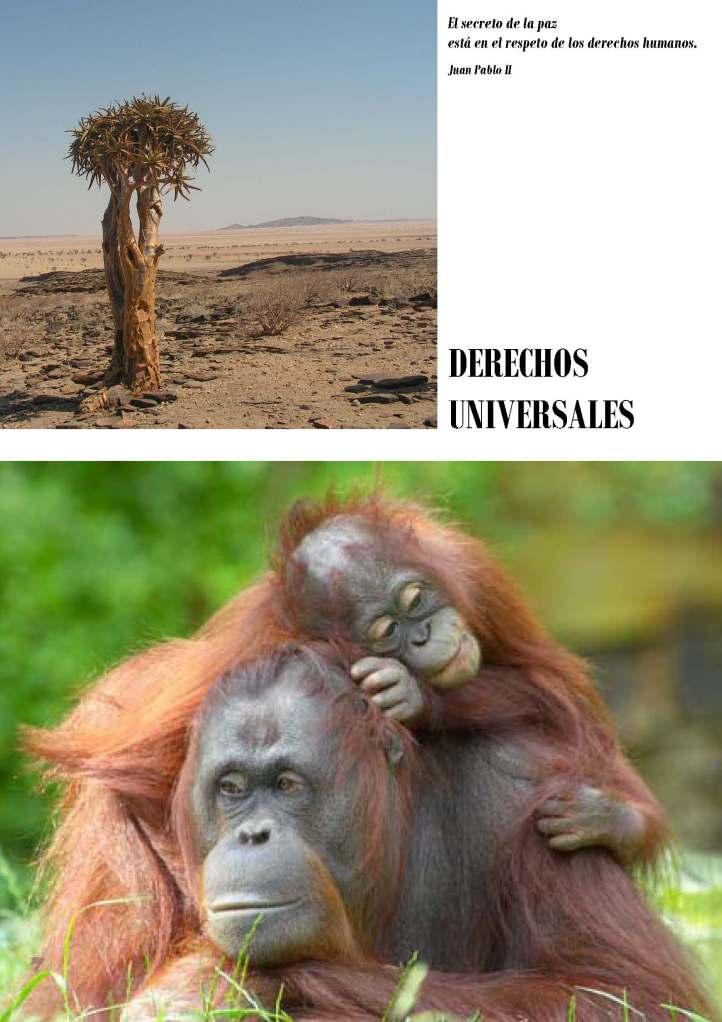 LA SOLIDARIDAD... Nº 4 Derechos universales..._Página_03