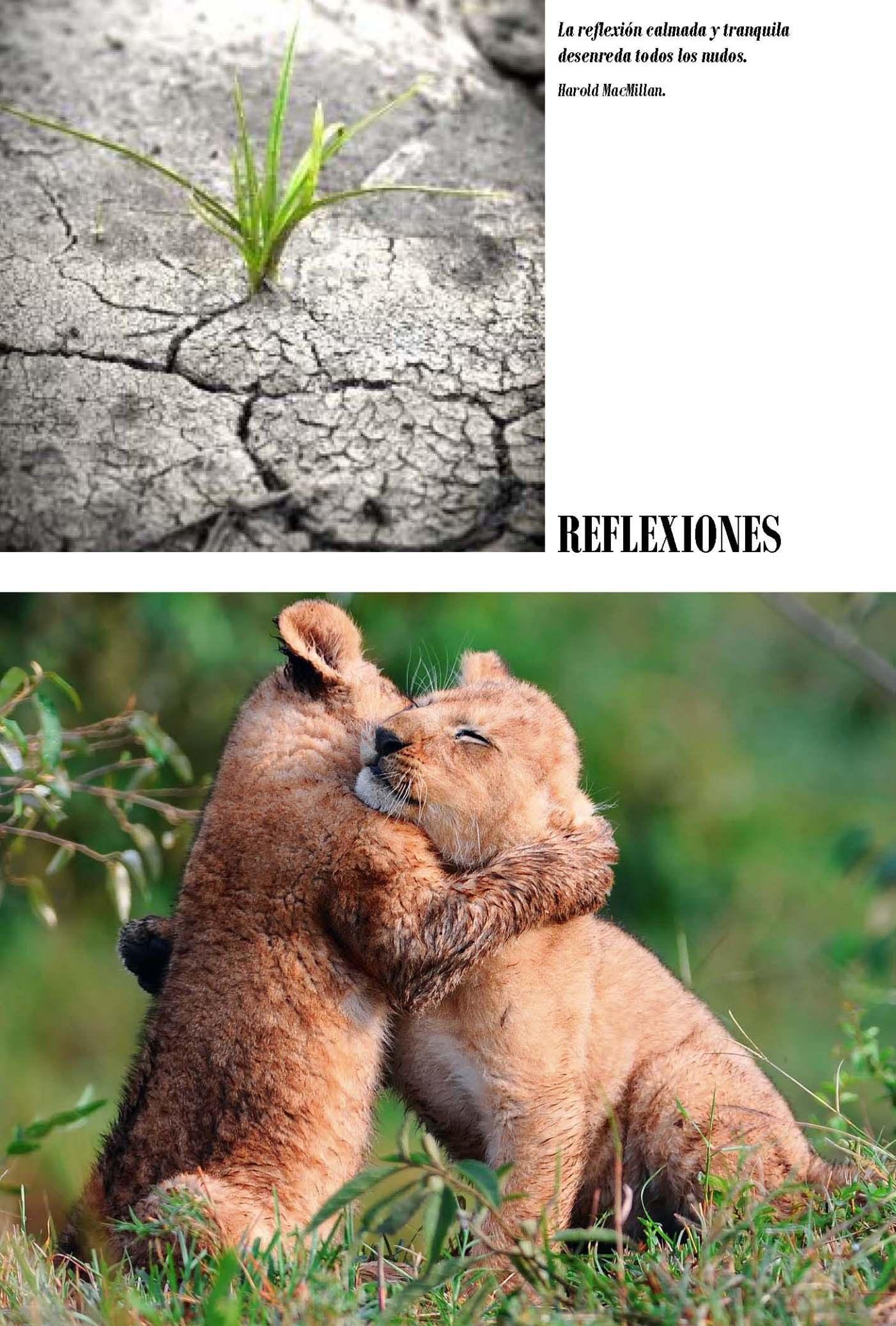 LA SOLIDARIDAD... Nº 6 Reflexiones..._Página_03